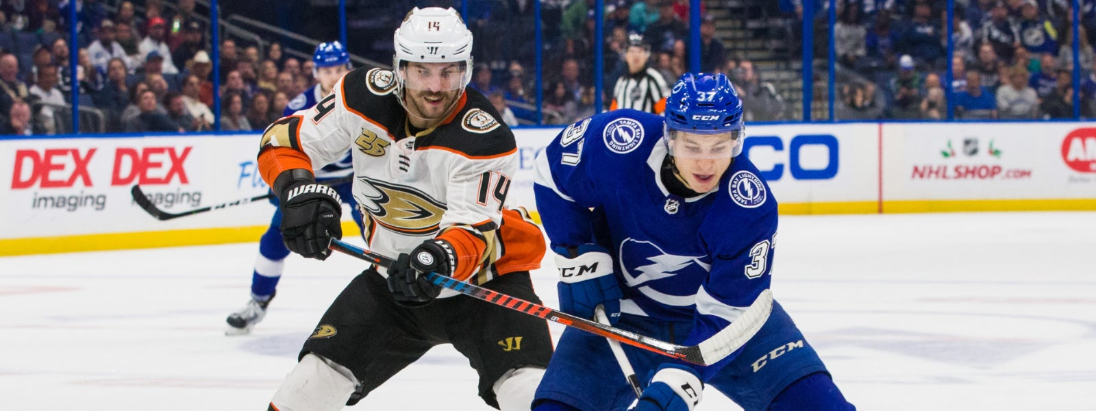 Tampa Bay Lightning vs. Anaheim Ducks
